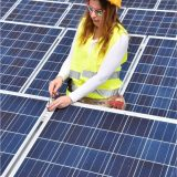 low cost solar providers in new york