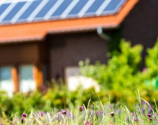 why go solar before summer